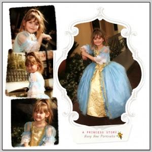 little girl princess photo session
