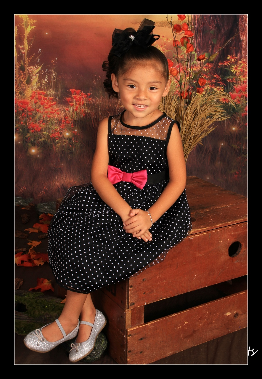 fall background Busy Bee Portraits, Preschool Photographer, Santa Barbara Children's Photographer, Family Photographer in Santa Barbara