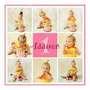one year old photo session cake smash
