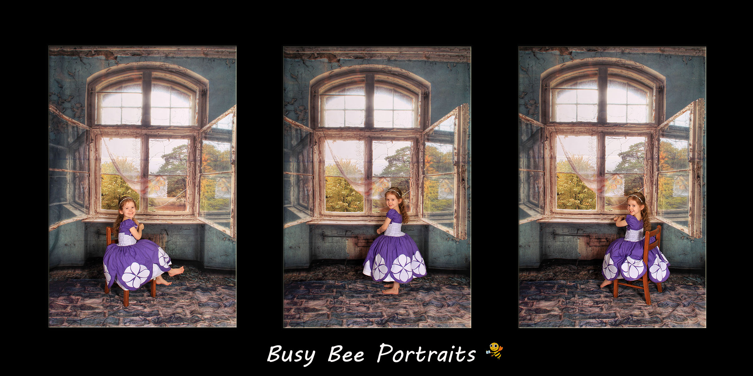 Busy Bee Portraits Vintage Window Background