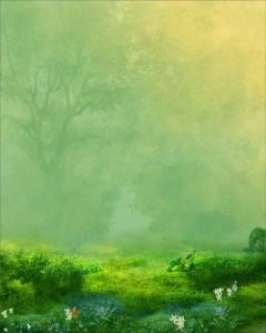Vintage Spring Meadow