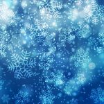 Busy Bee Portraits Blue Snowflake background